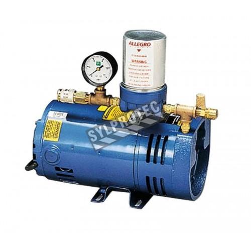 Ensemble de 4 palmes de carbone pour pompe à air ambiant en basse pression RA9806 (A-300) d'Allegro.