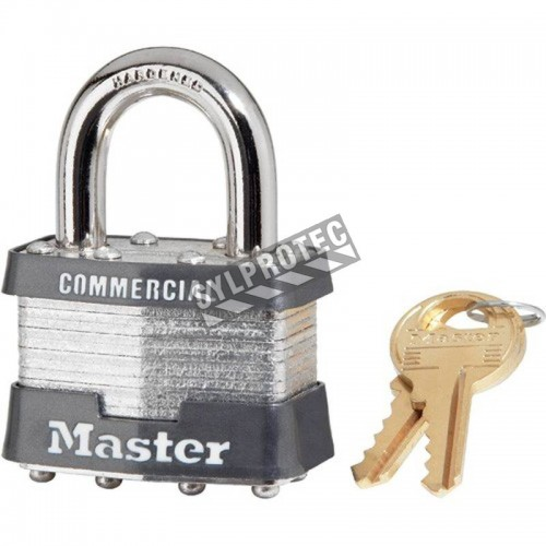 Black regular padlock whit key type alike