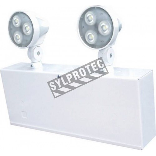 Emergency light unit 6 volts 36 watts with 2 Led