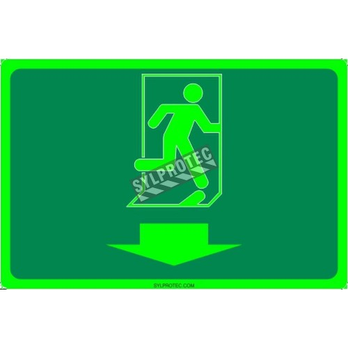 Photo luminescent pictogram sign running man with down arrow in various sizes shapes materials